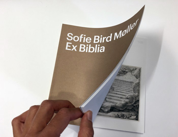 publikation-sbm-1