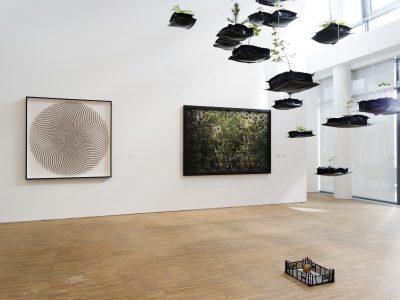 Ausstellungsansicht, 'Everything is going to be alright', Doppelpass IV: Andreas Greiner und Maximilian Prüfer, DG Kunstraum 2020, Foto: Gerald von Foris